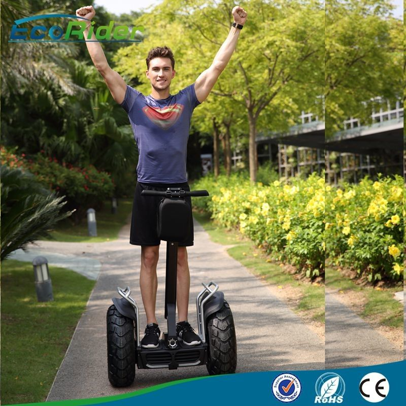 Audlt Off Road Two Wheels Self Balancing Electric Scooter Segway Type Multi Color