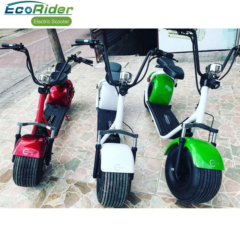 EEC Approved 2 Wheel Electric Scooter , 1200W Motor Harley Two Wheel Electric Bicycle